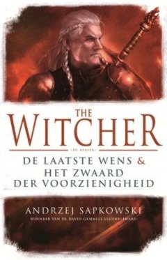 The Witcher deel 1